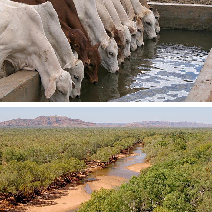 Groundwater Development in Northern Australia - Innovative Groundwater Solutions